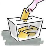 elezioni regionali 2014