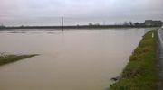 Alluvione 2015