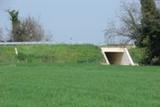 Vista ovest della scatolare sullo scolo Cerchia